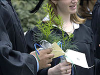 Connecticut College graduates are presented with Eastern White Pine saplings which they carry as they march at Commencement.